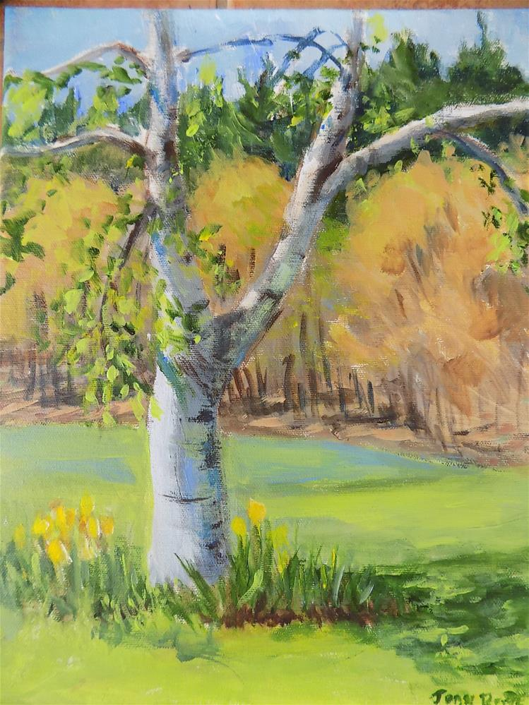 """Spring Birch"" original fine art by Joan Reive"