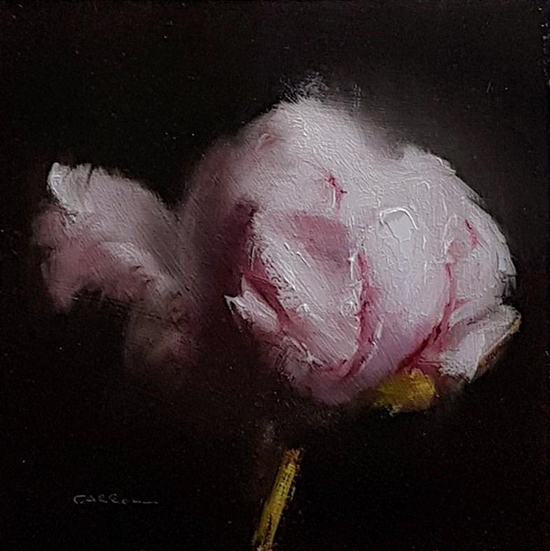 """Peony Bud"" original fine art by Neil Carroll"