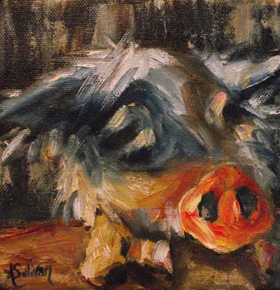 """Scruffy"" original fine art by Angela Sullivan"