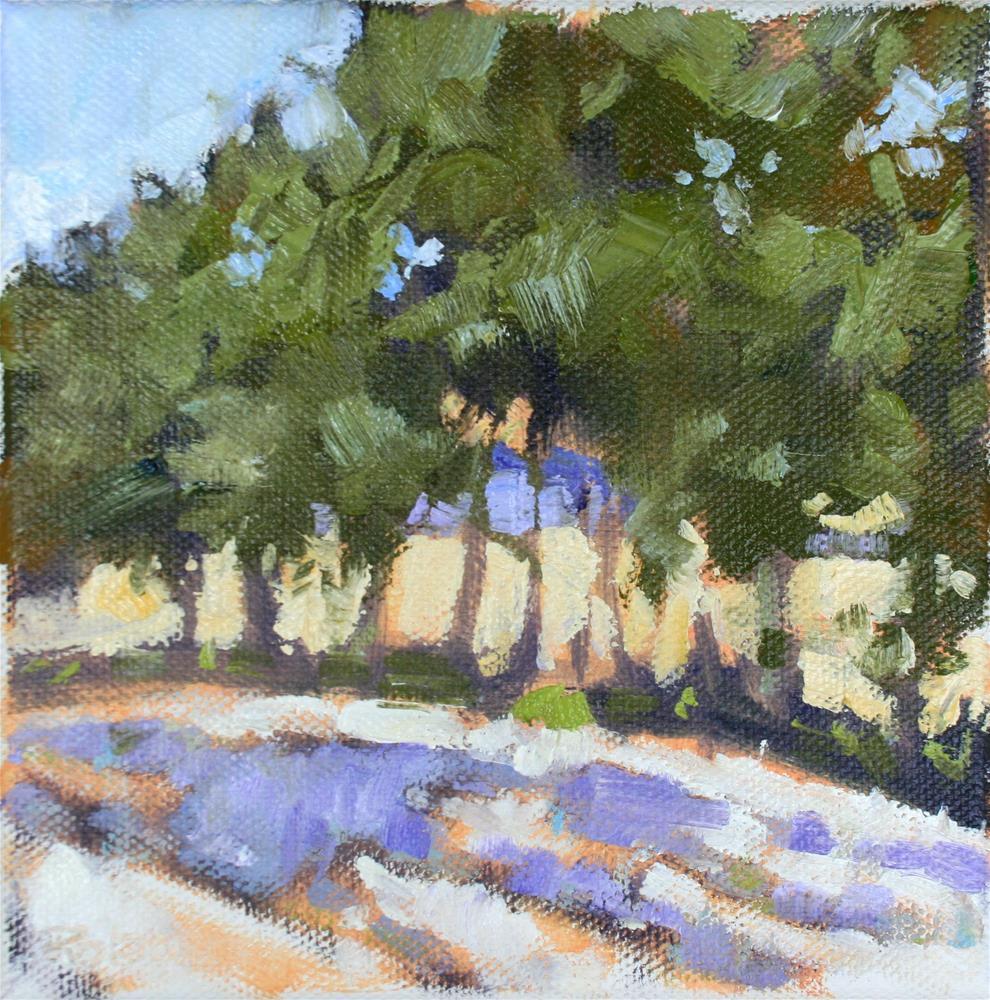 """Provence - Abandoned Lavender"" original fine art by Jane Robertson"