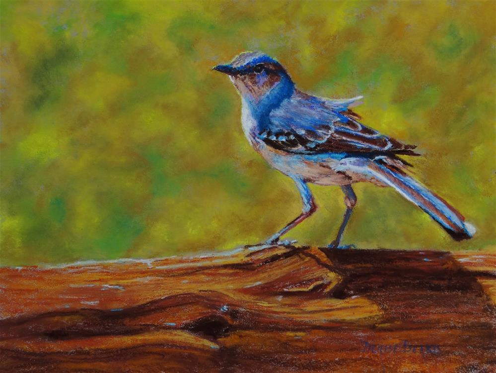 """Mockingbird on a Fence"" original fine art by Denise Beard"