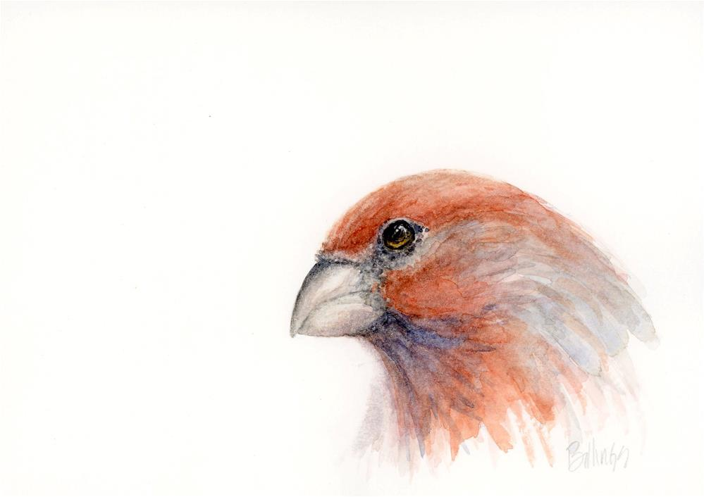 """Finch Portrait III"" original fine art by Susanne Billings"