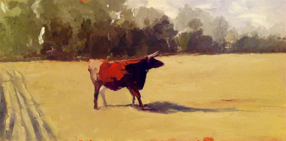 """Cow at Middleton 12x16 oil"" original fine art by Deborah R Hill"