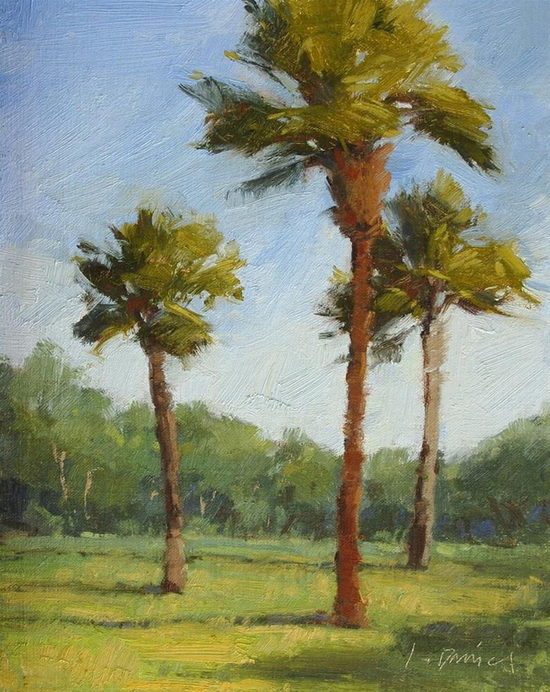 """Three Palms"" original fine art by Laurel Daniel"