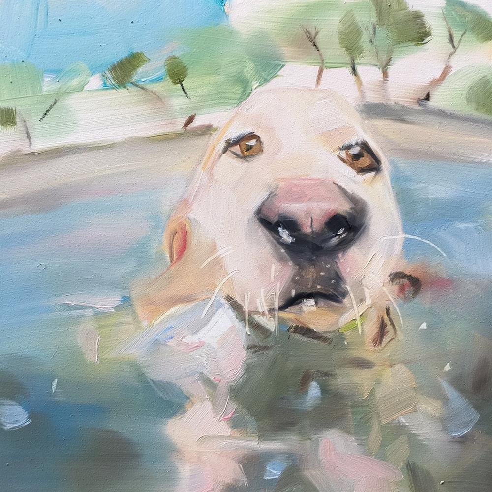 """""""444 Doggy Paddle"""" original fine art by Jenny Doh"""