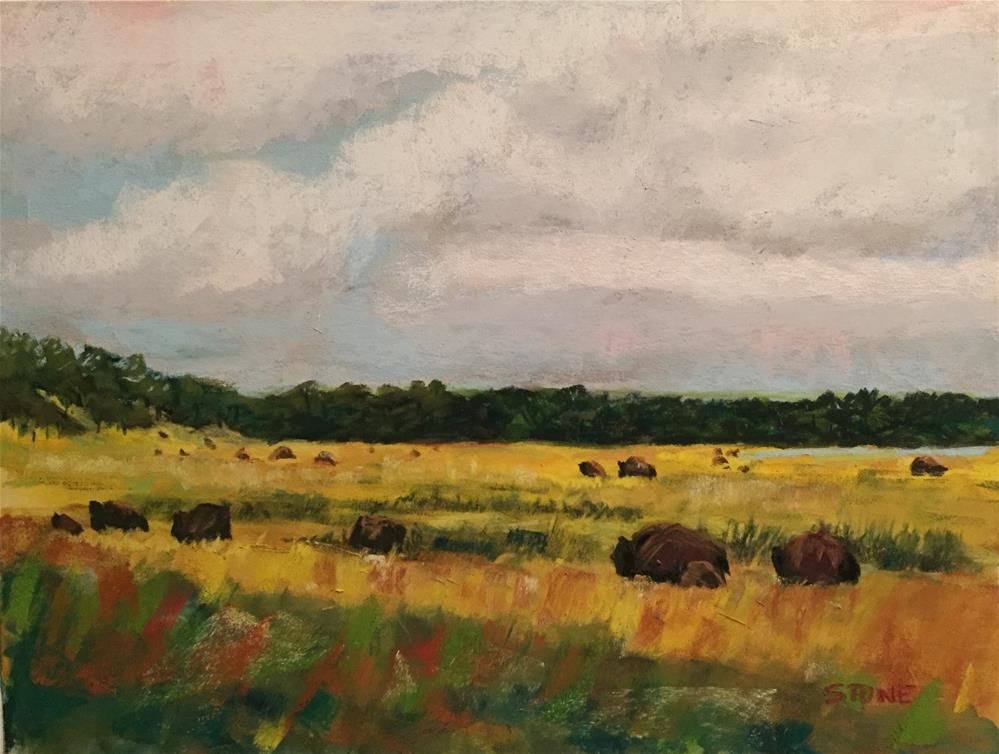 """Bison in Summer, Osage Hills"" original fine art by Greg Stone"