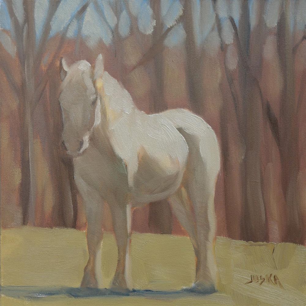 """""""Gray Horse in Spring Sunshine"""" original fine art by Elaine Juska Joseph"""