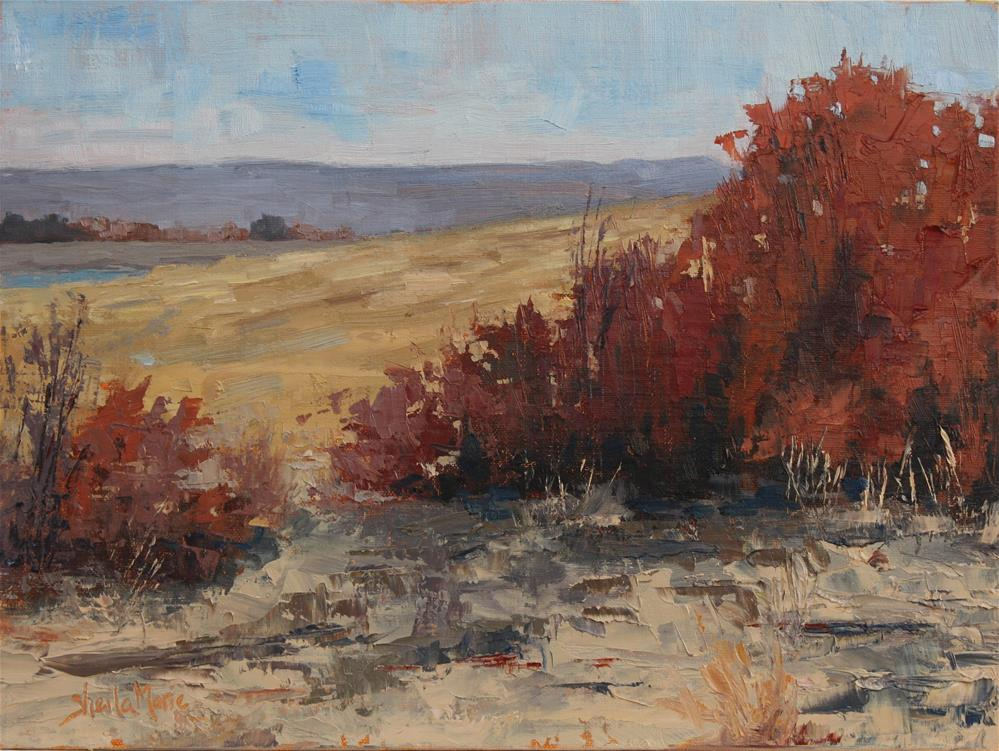"""Dakota Wilows"" original fine art by Sheila Marie"