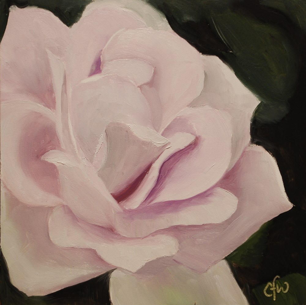 """Pinkish Rose"" original fine art by Gary Westlake"