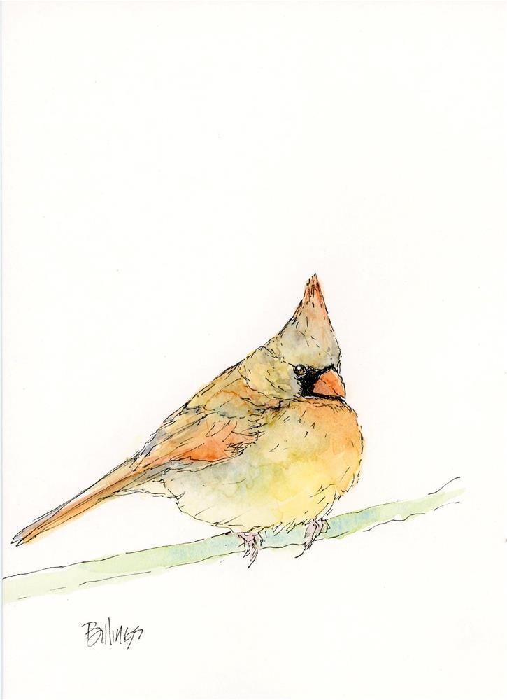 """""""Chubby Cardinal Study II"""" original fine art by Susanne Billings"""