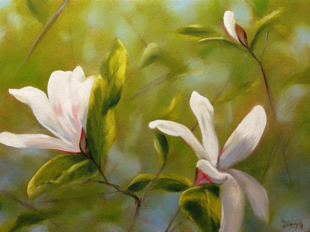 """Magnolias"" original fine art by Dalan Wells"