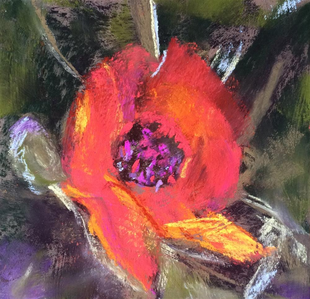 """Poppy I"" original fine art by Cristine Kossow"