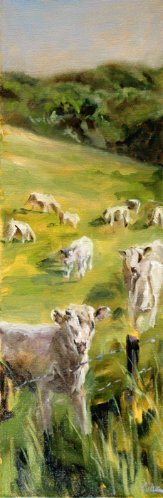 """les vaches de Maizeroy"" original fine art by Evelyne Heimburger Evhe"