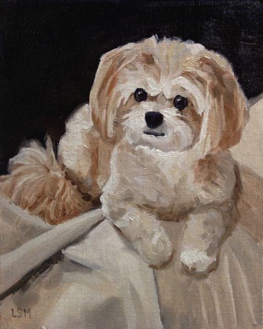 """Bailey"" original fine art by Linda Marino"