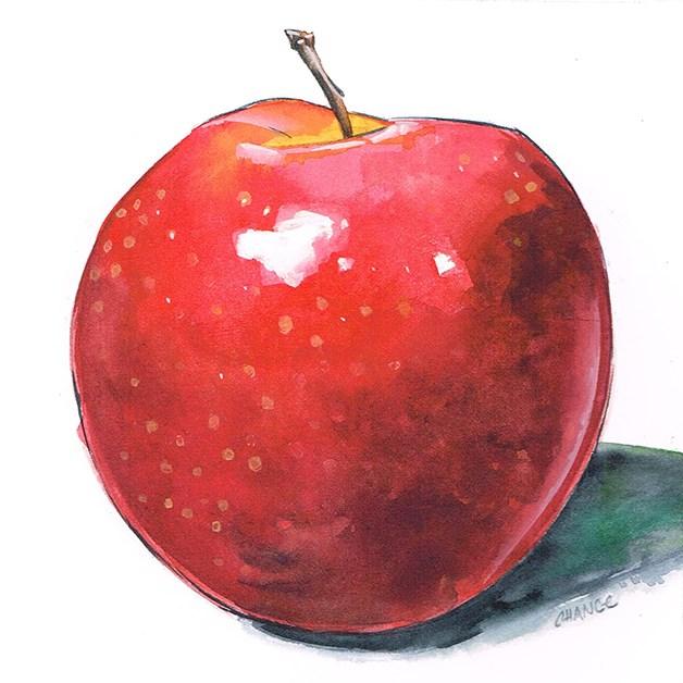 """No. 44 Apple"" original fine art by Annabel Chance"