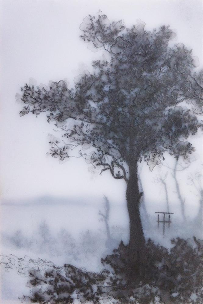 """Corregidor Island Tree"" original fine art by Terri Heinrichs"