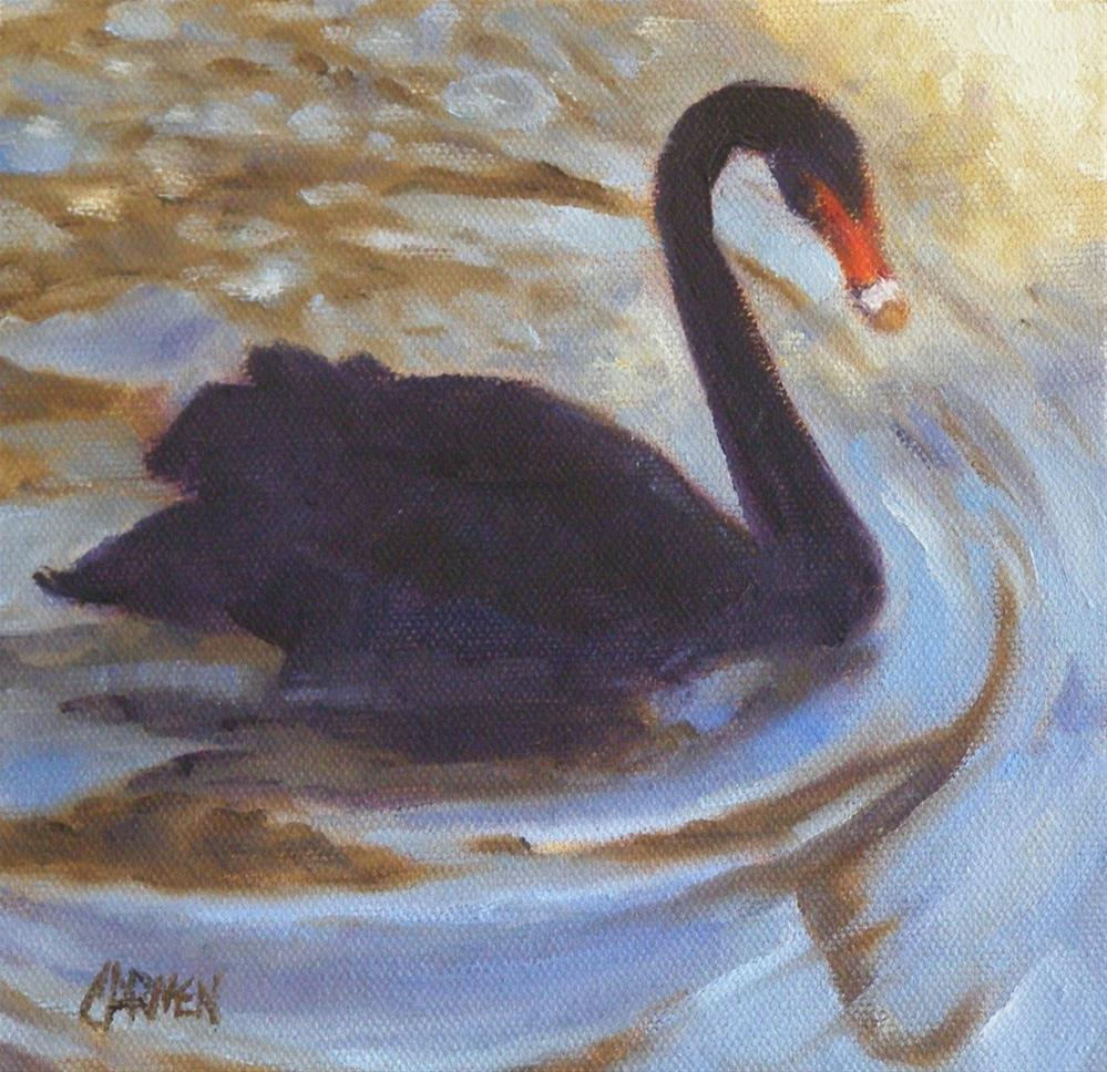"""Black Swan, 6x6 Oil on Canvas"" original fine art by Carmen Beecher"