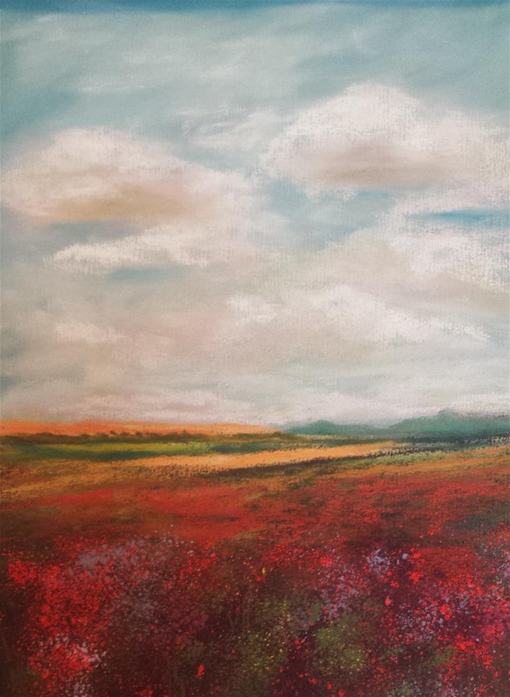 """Field of Colorful Reds"" original fine art by Donna Donnon"