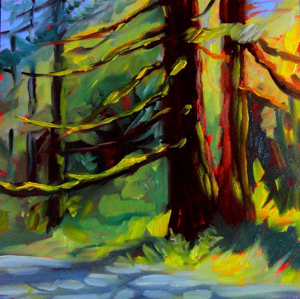 """""""Sunlit Firs"""" original fine art by Cietha Wilson"""