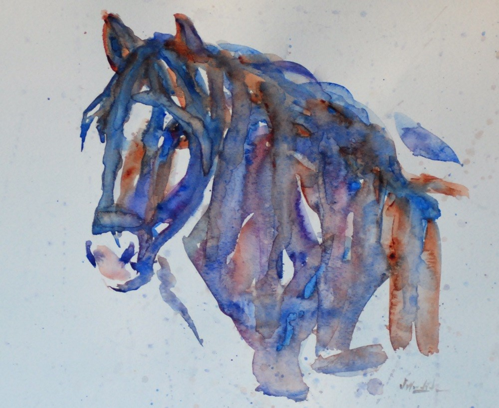 """Dark Horse"" original fine art by Vicki Wood"