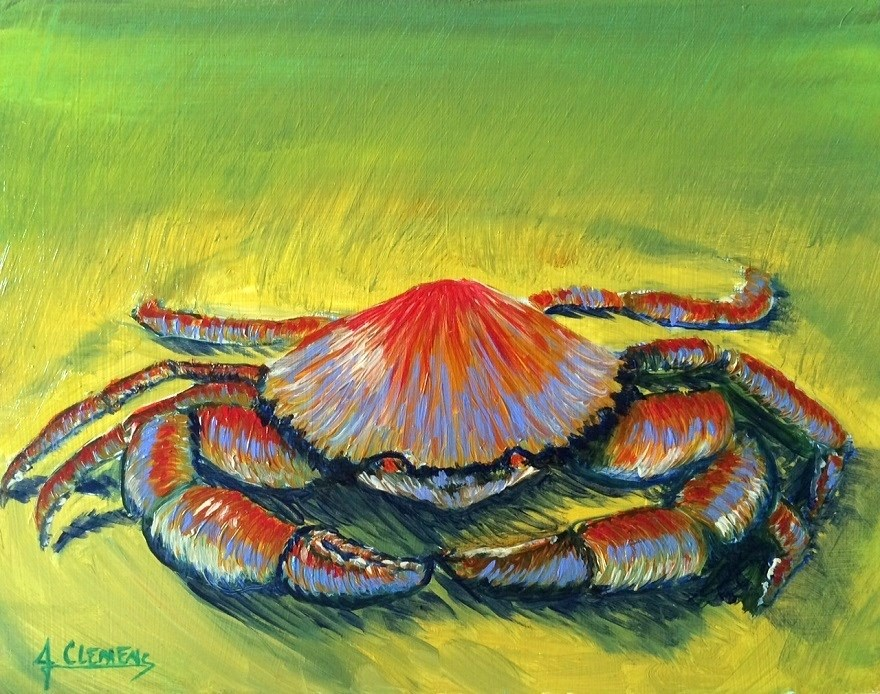 """Lil Crab"" original fine art by Jolynn Clemens"