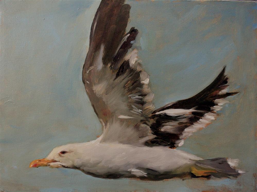 """Seagull sketch"" original fine art by Marco Vazquez"