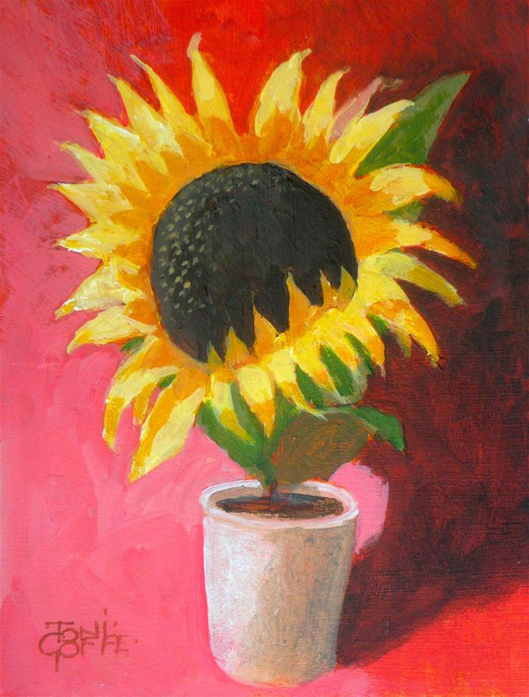 """Sunflower"" original fine art by Toni Goffe"