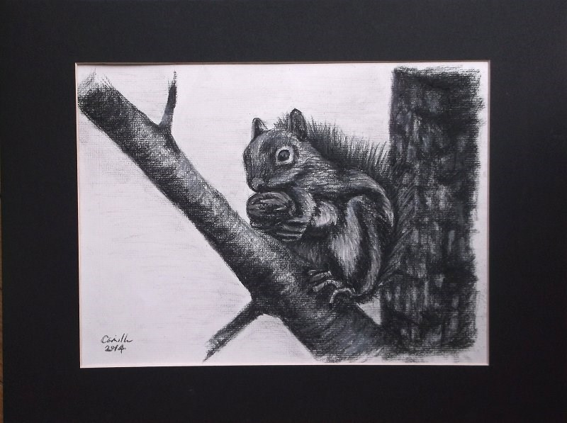 """Squirrel Holding Nut"" original fine art by Camille Morgan"