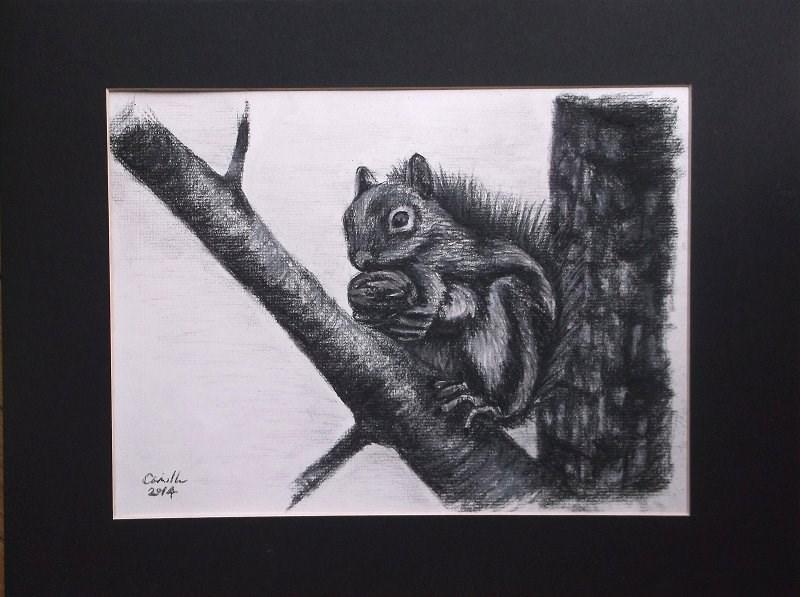 """Squirrel Holding Nut"" original fine art by Camille Morgan"
