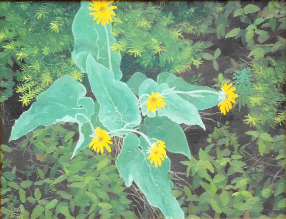"""Arrowleaf"" original fine art by Greg Arens"