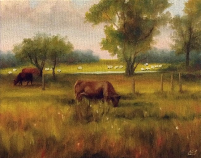 """Cattle and Sheep"" original fine art by ~ces~ Christine E. S. Code"