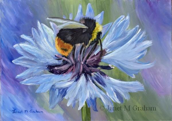 """Bee"" original fine art by Janet Graham"