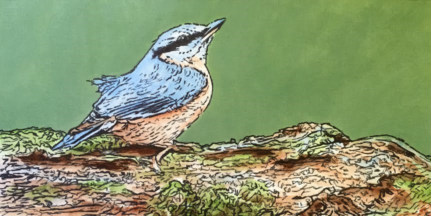 """Bird on a Branch 2"" original fine art by Nan Johnson"