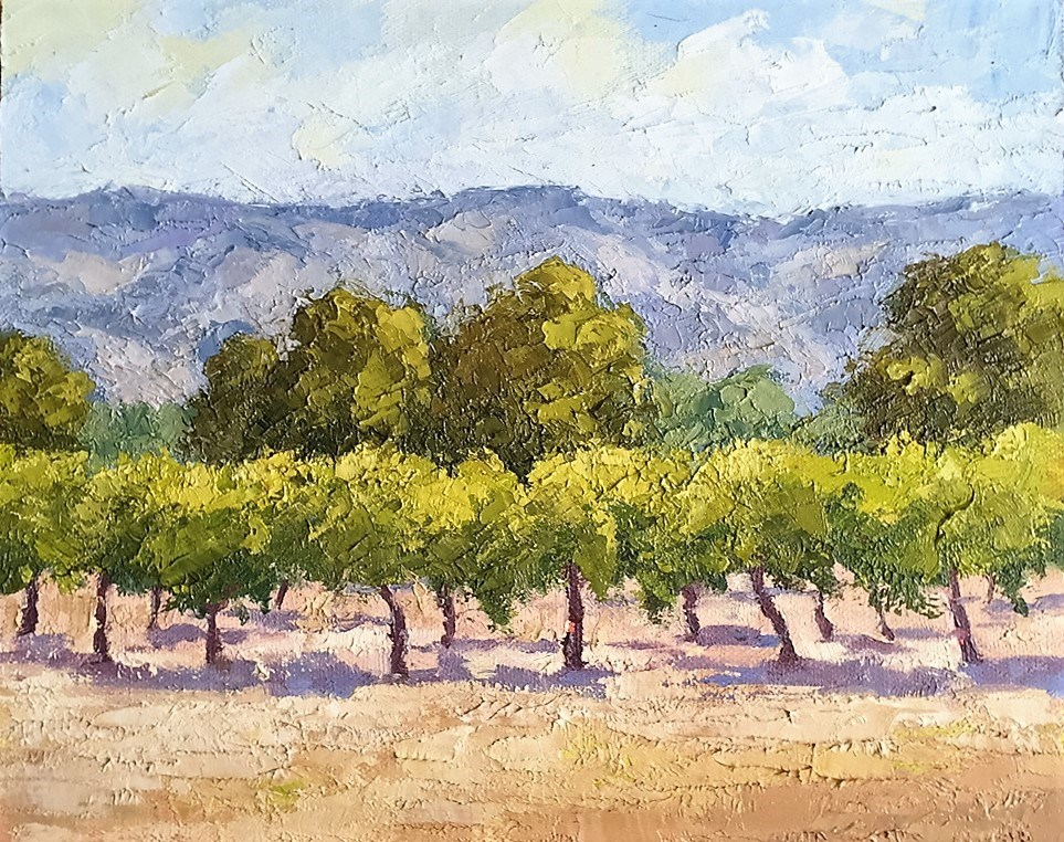 """Spring In Napa Valley"" original fine art by Mark Bidstrup"