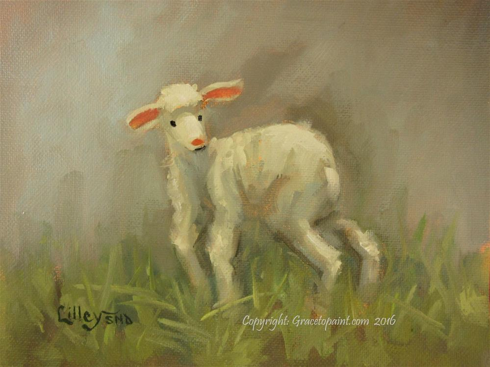 """Lamb #12"" original fine art by Maresa Lilley"
