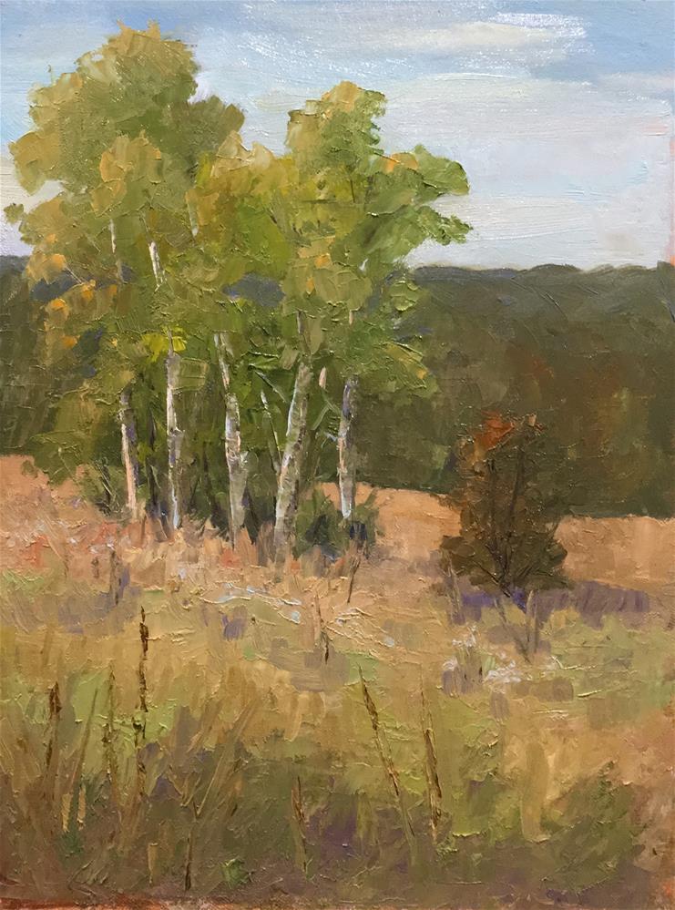 """Aspen Trees, Lebanon Hills"" original fine art by Judith Anderson"