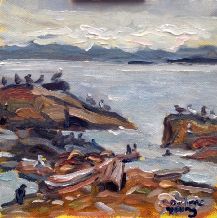 """Ogden Point, Bird Rally, oil on canvas, 6x6"" original fine art by Darlene Young"