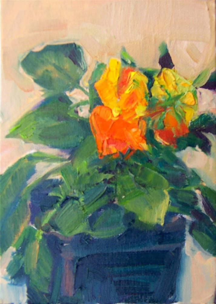 """Orange Pansy,still life,oil on canvas,7x5,price$200"" original fine art by Joy Olney"