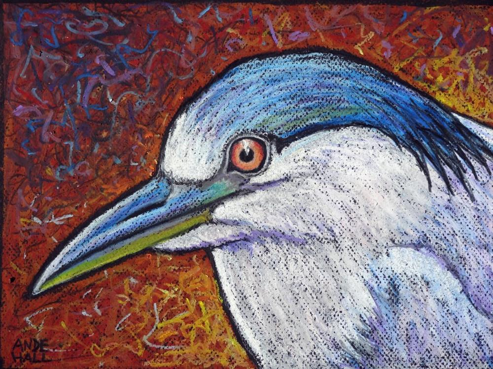 """Black Crowned Night Heron"" original fine art by Ande Hall"