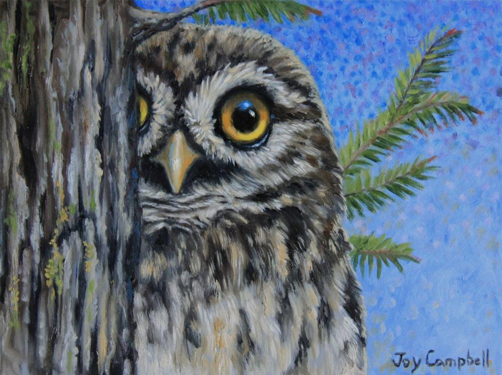 """A Cautious Fellow"" original fine art by Joy Campbell"