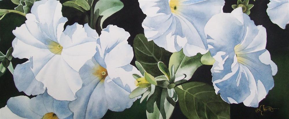 """Summer Whites"" original fine art by Jacqueline Gnott, whs"
