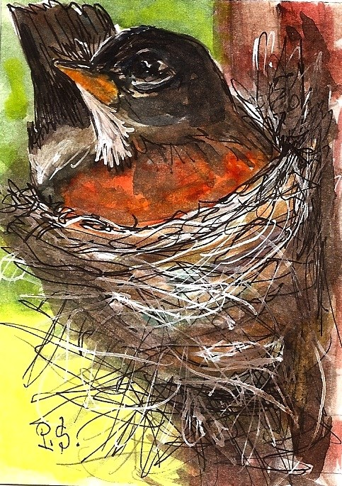 """ACEO Robin Nest Illustration Painting Original WC pen ink by Penny StewArt"" original fine art by Penny Lee StewArt"