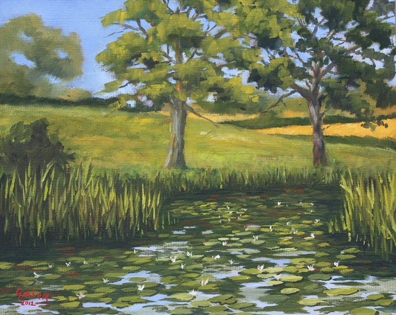 """Turtle Brook"" original fine art by Graham Townsend"