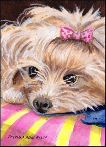 """Yorkie, My Kind of Dog"" original fine art by Patricia Ann Rizzo"