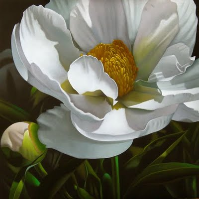 """Peony 18x18"" original fine art by M Collier"
