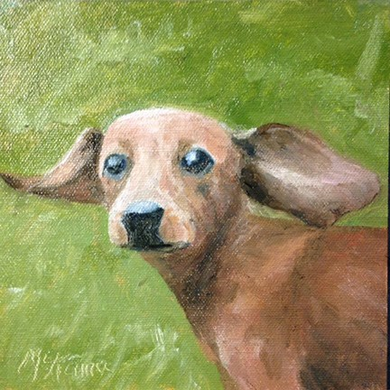 """Flying Ears"" original fine art by Judith McKenna"