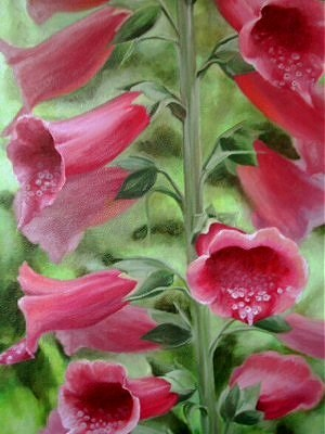 """Pink Foxglove"" original fine art by Maria Levandowski"