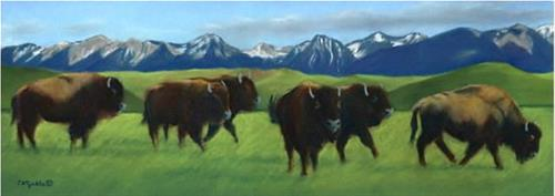 """Where the Buffalo Roam"" original fine art by Carol Zirkle"
