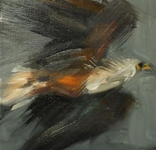 """eagle,027"" original fine art by Run-      Zhang Zane"