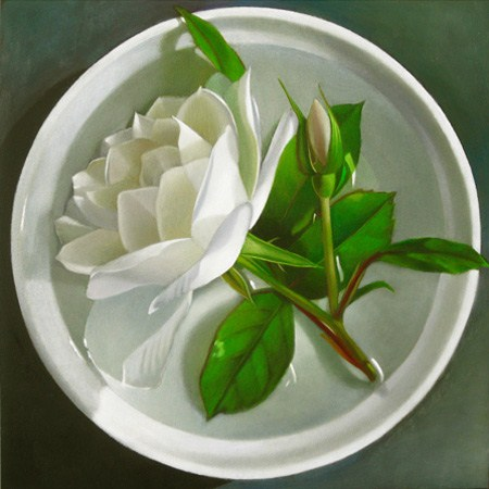 """White Rose In Bowl Of Water 6x6"" original fine art by M Collier"